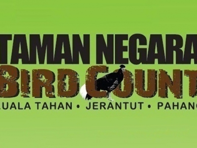 TAMAN NEGARA BIRD COUNT: MARCH, 2021
