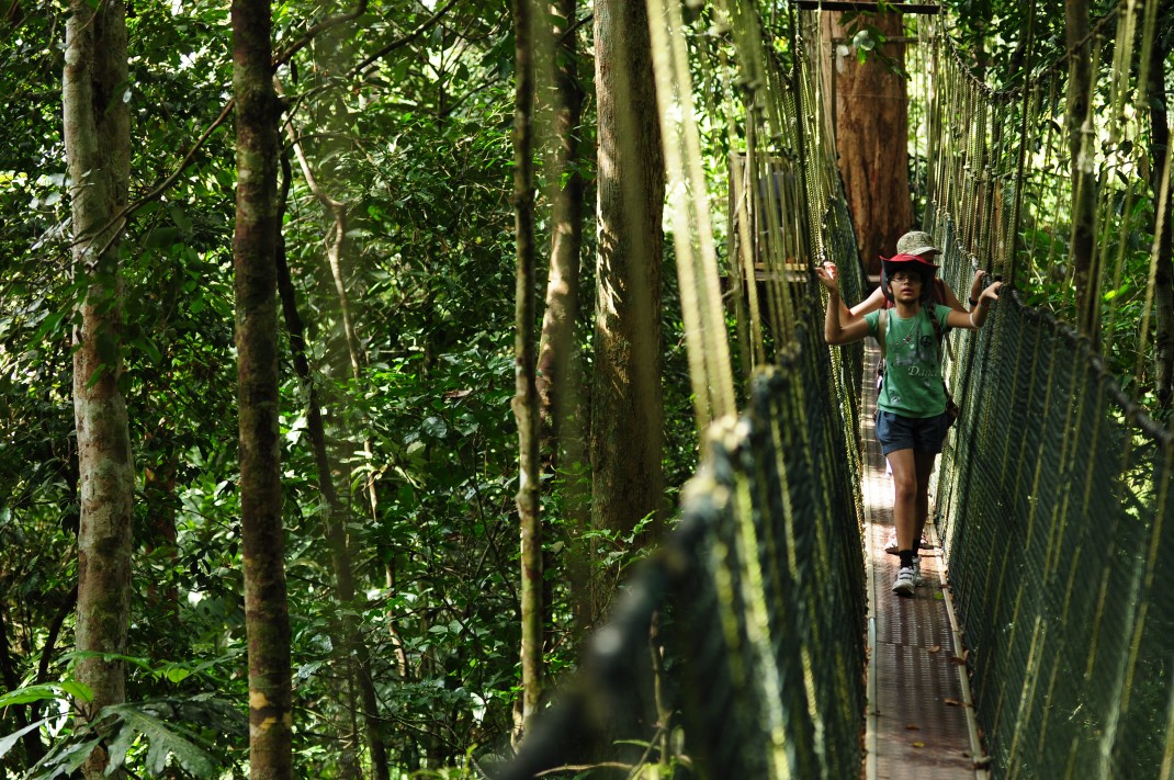 Official Portal Of Tourism Pahang - Kuala Tahan